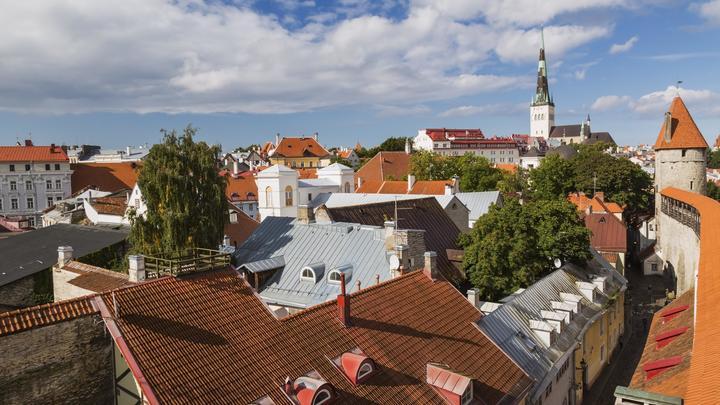 Эстония вдвое увеличит траты на строительство границы с Россией