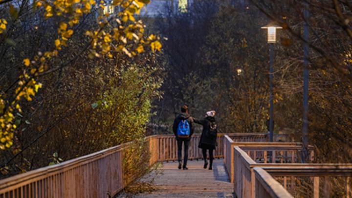Аномальный ноябрь: Синоптик указал на особую погоду в регионах России