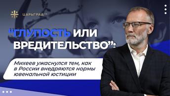 «Глупость или вредительство»: Михеев ужаснулся тем, как в России внедряются нормы ювенальной юстиции
