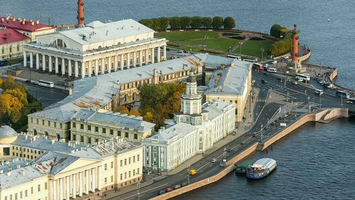 Кунсткамера переедет в Озерки: Многоэтажную заброшку превратят в огромный музей