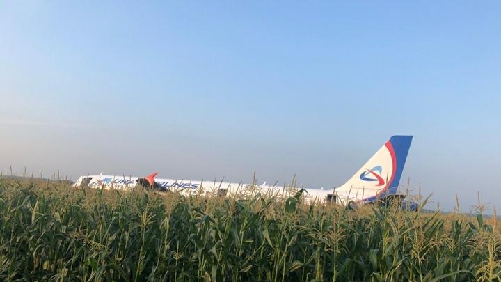 Летчиков-героев, посадивших A321 на кукурузное поле, ждут на Байконуре