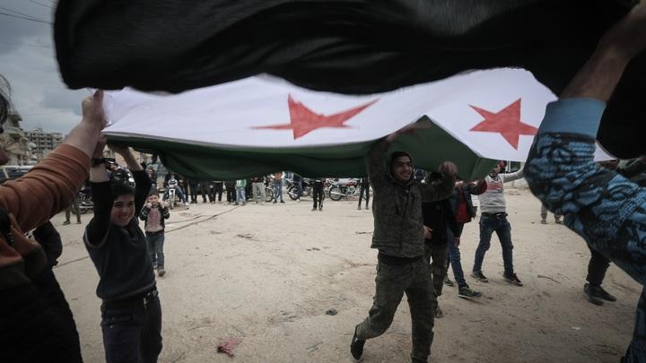 Представитель Сирии предложил США отдать Северную Каролину своей пешке в политической игре