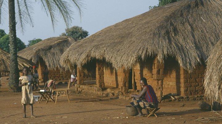 СМИ сообщили о гибели группы гуманитарных работников в центре Африки