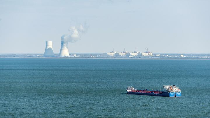 Учёные рассказали, к чему может привести изменение климата в Ростовской области