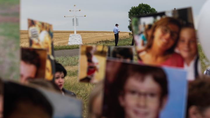 Причастность Киева к крушению МН17 доказана? Проукраинский эксперт явился с повинной