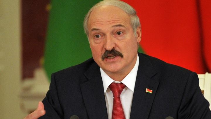 Во всём признались и готовы грузить навоз: Лукашенко о судьбе фигурантов сахарного дела