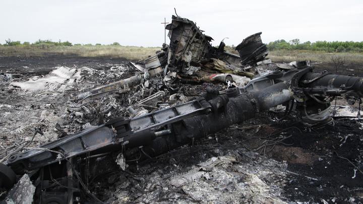 Это Украина. Немецкий журналист вскрыл неудобный факт о катастрофе MH17