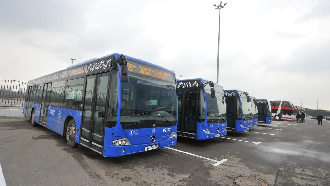 В автобусах дальнего следования появится бесплатный Wi-Fi