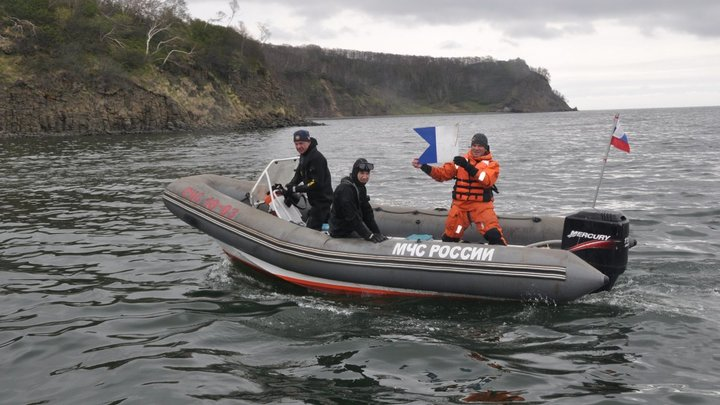 На Камчатке назвали имя ответственного за массовую гибель морских животных в регионе
