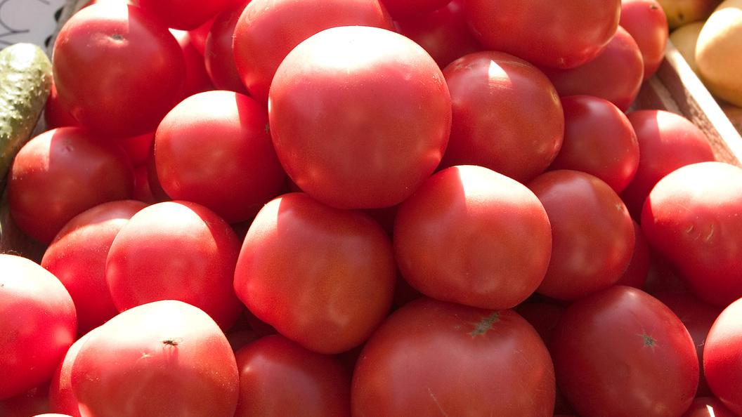Судьбу турецких томатов обсудят власти России и Турции