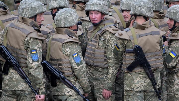 Вот это зрада: Генерал ВСУ назвал украинских карателей трусами и мародерами