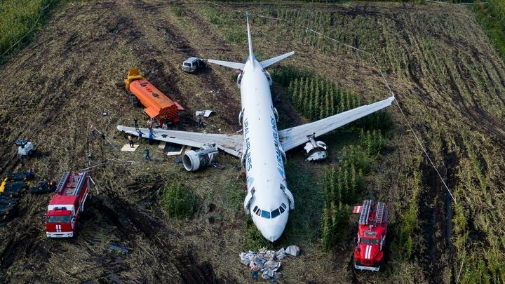 Пилоты давно кричат: Эксперт о нехватке летчиков, способных на чудо в кукурузном поле