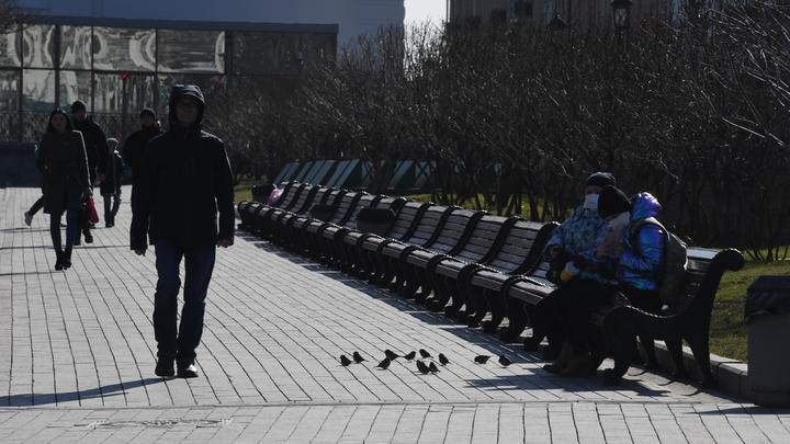 Врач разрешил жителям России гулять в нерабочую неделю: Почему бы и нет