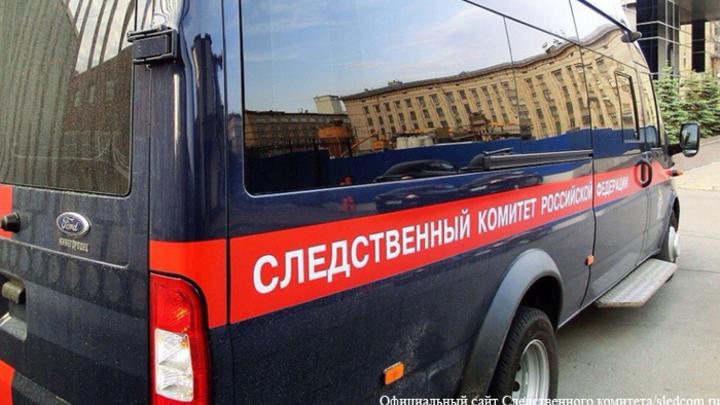 В Москве разоблачили серийного педофила, действовавшего с 2009 года