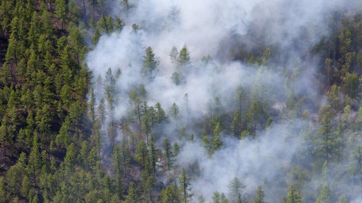 Из-за пожаров в Волгоградской области эвакуируют детские лагеря