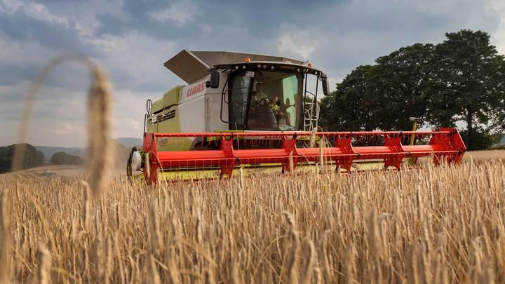 Украина пожалуется в ВТО из-за проблем с поставками сельхозпродукции