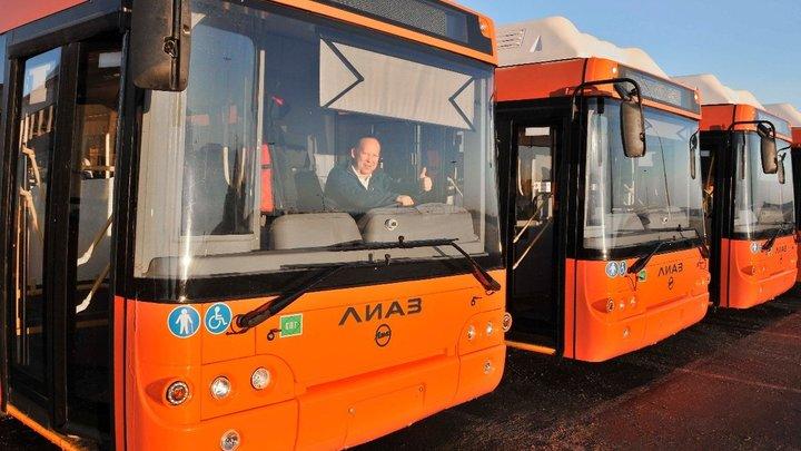 Во Владимирскую область привезли еще 50 старых московских автобусов