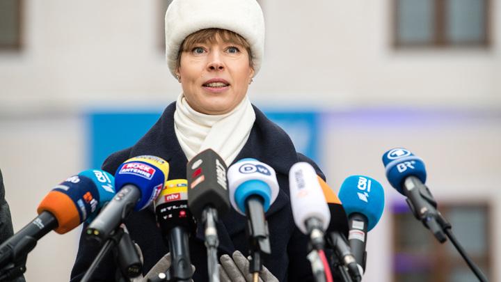Саакашвили тоже в НАТО верил: Сатановский напомнил историю президенту Эстонии