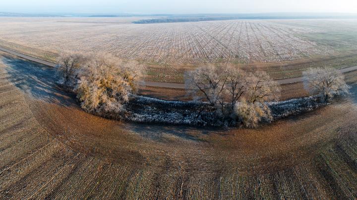 В Россию придёт ненормальное тепло: Вильфанд раскрыл места аномалии