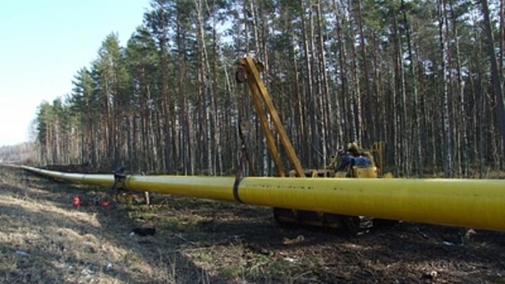 Не следила за газопроводом: Прокурата выявила бездействие главы Самары Елены Лапушкиной