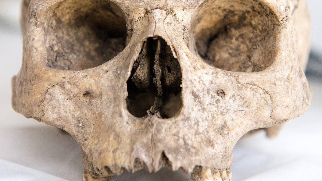 Крупнейшее вевропейских странах массовое захоронение Средневековья найдено вЧехии
