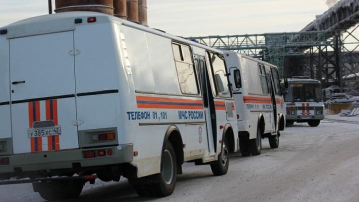 Забираем документы и уходим: В зоопарке в кемеровском ТЦ бросили умирать сотни животных
