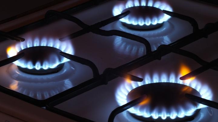 Это будет Нобелевская по физике: В Рунете нашли серьёзный просчёт в газовых планах  Украины