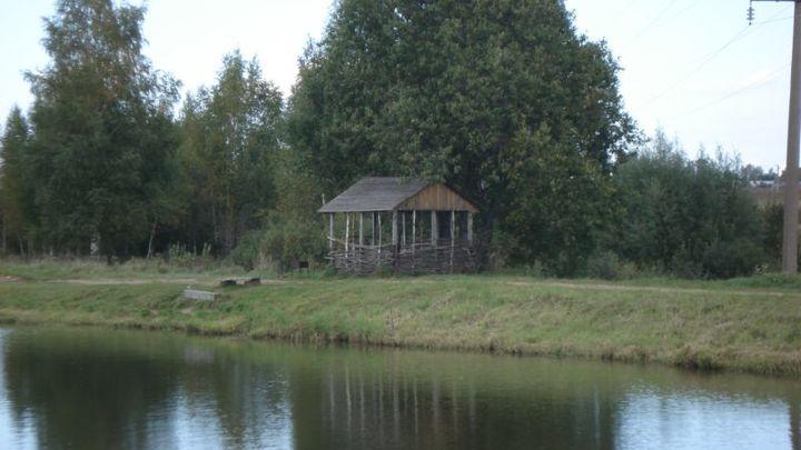 Уничтожение пруда в Подмосковье расследуют на федеральном уровне