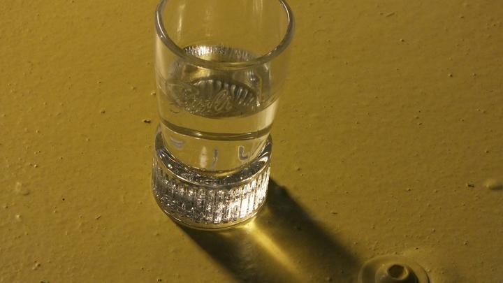 Онищенко призвал повысить стоимость водки и назвал цену