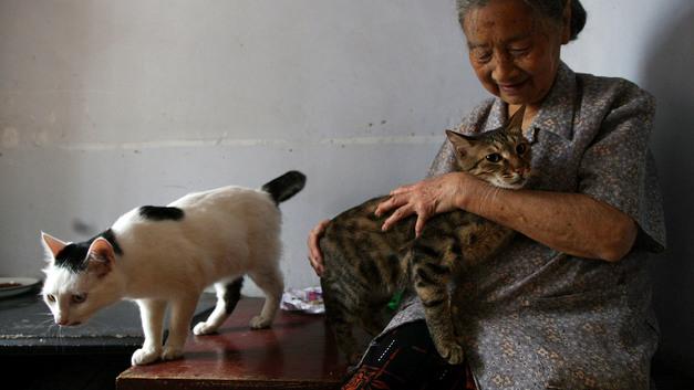 «Пенсионерам в Китае не платят вообще»: В Сети объяснили, почему жителям России лгут о пенсиях