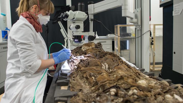 Мальтийский орден оставил отпечаток на России: Удивительная находка московских археологов