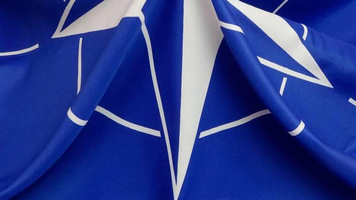 Прибалты показывают животный нацизм: солдаты НАТО в центре скандала