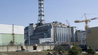 На Чернобыльской АЭС сделали необычную находку