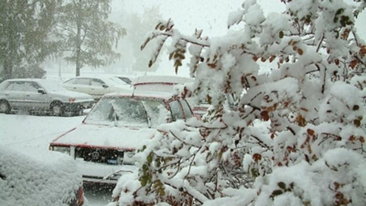 Синоптик назвал день прихода зимы в Москву: Вся эта моросящая влага будет подмерзать