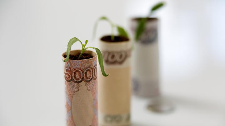 Бесконечные междуэлитные батлы: Михеев оценил заявления о деноминации рубля