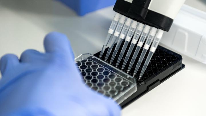 Грязные перчатки и неодноразовые катетеры: СМИ узнали, как в Благовещенске заразили гепатитом 100 больных раком детей