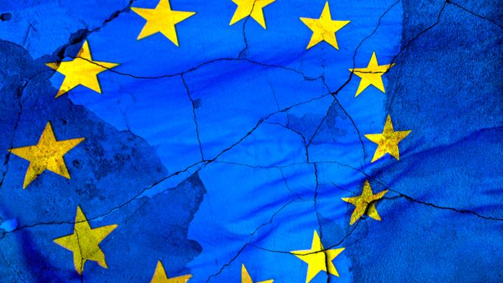 Чего испугались «европейские патриоты» вроде Улицкой и Алексиевич?