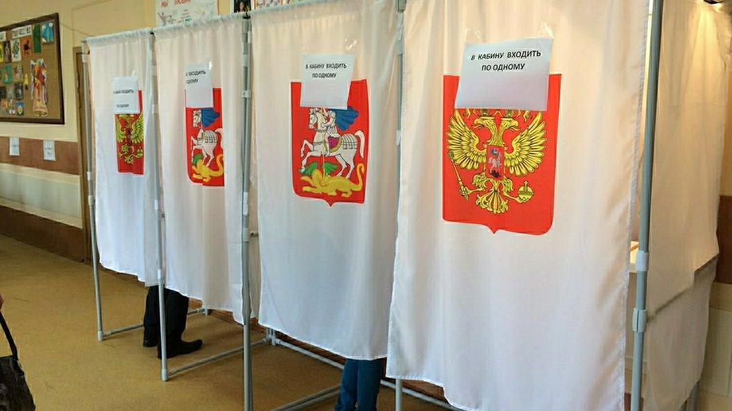 Общественница Волынец подала документы для участия ввыборах президента