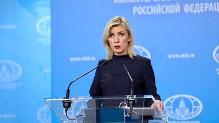 """""""Как тараканы"""": Захарова раскрыла всю суть переговоров с Навальным после истерики его команды"""
