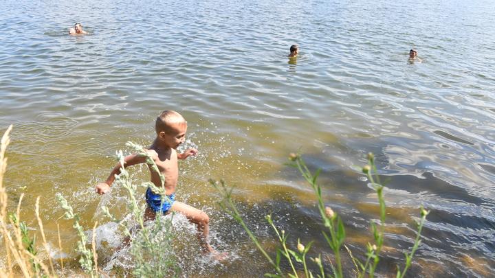 Где можно искупаться и какая температура воды в Химках