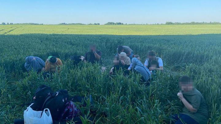 На границе Литвы и Беларуси задержали 12 нелегалов