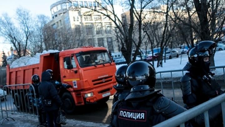 В Тольятти озаботились возможной гибелью придорожных деревьев и газонов