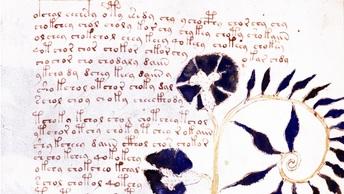 Искусственный интеллект расшифровал загадочную рукопись Войнича