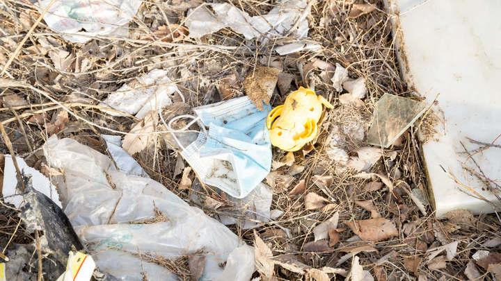 В Заксобрании раскритиковали мусорную реформу и работу Экологии-Новосибирск