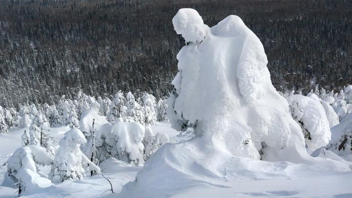 Снежный человек погнался за компанией друзей в Башкирии: Учёные примчались на место ЧП