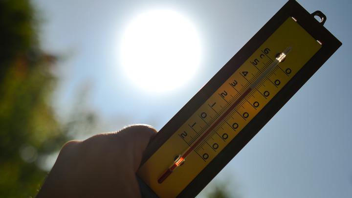 Африканское пекло: В Европе растёт число жертв аномальной жары