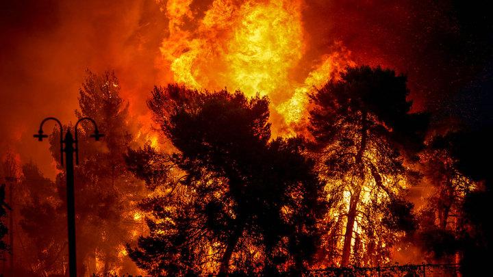 Огонь пожирает Грецию: Ситуация с пожарами вышла из-под контроля