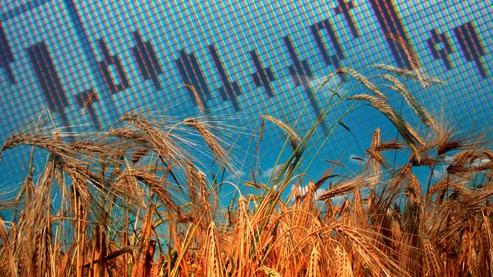 Санкции и зерно: Минэкономразвития все же увидело разгон инфляции