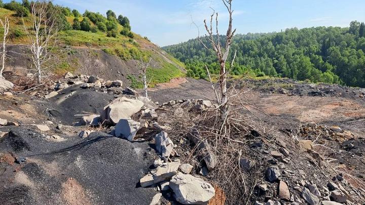 Кузбасские власти сообщили о безопасности отвала Тулеева в Апанасе