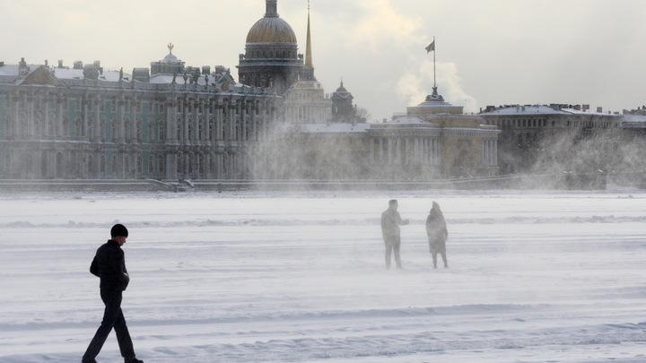В Санкт-Петербурге ветер сдул светофор и свалил с ног пешеходов